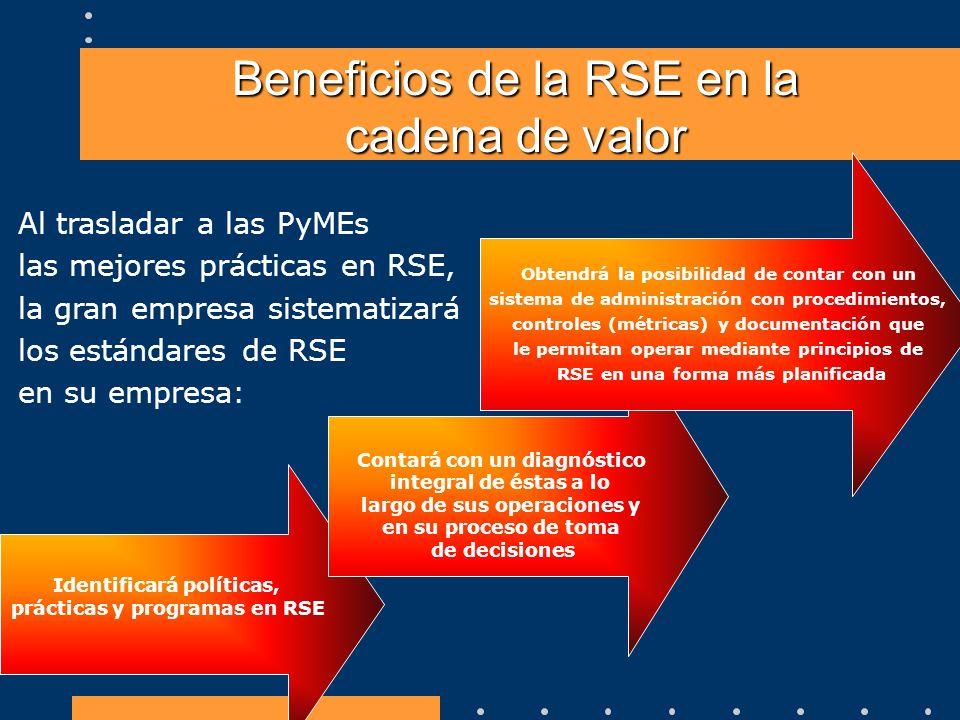 Al trasladar a las PyMEs las mejores prácticas en RSE, la gran empresa sistematizará los estándares de RSE en su empresa: Identificará políticas, prác