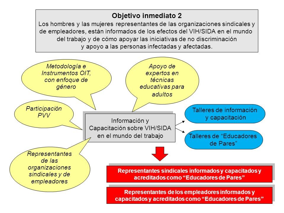 Objetivo inmediato 2 Los hombres y las mujeres representantes de las organizaciones sindicales y de empleadores, están informados de los efectos del V