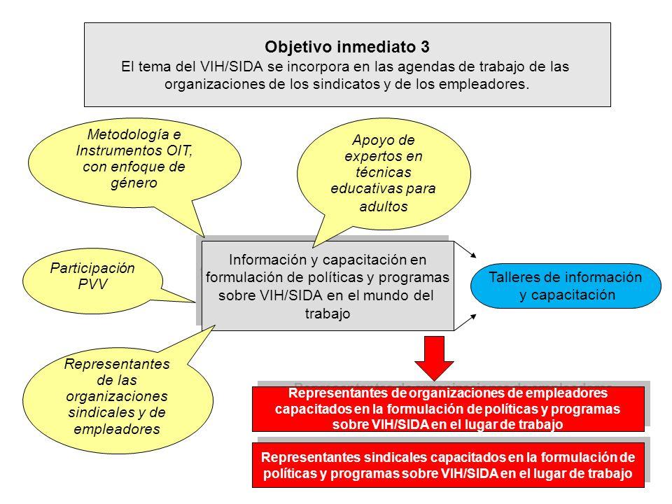 Objetivo inmediato 3 El tema del VIH/SIDA se incorpora en las agendas de trabajo de las organizaciones de los sindicatos y de los empleadores. Informa