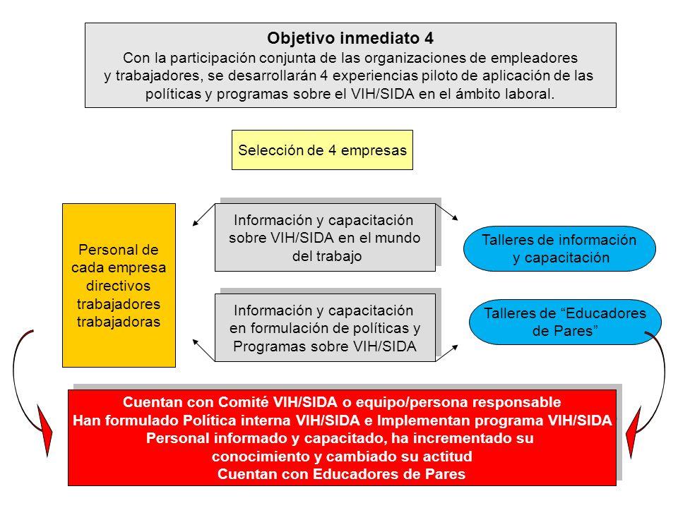 Objetivo inmediato 4 Con la participación conjunta de las organizaciones de empleadores y trabajadores, se desarrollarán 4 experiencias piloto de apli