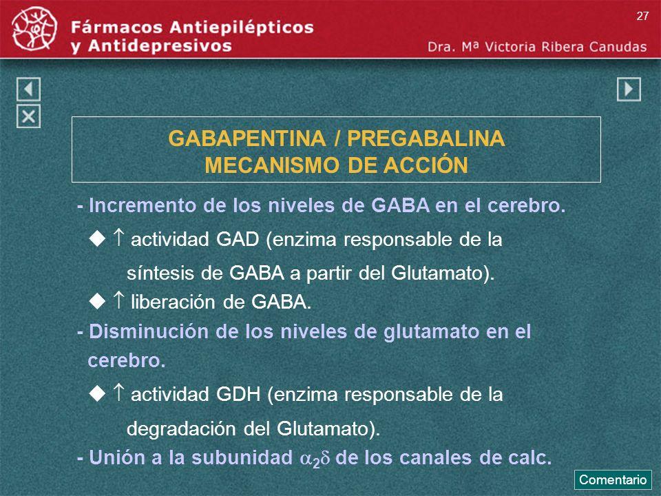 GABAPENTINA / PREGABALINA MECANISMO DE ACCIÓN - Incremento de los niveles de GABA en el cerebro. actividad GAD (enzima responsable de la síntesis de G