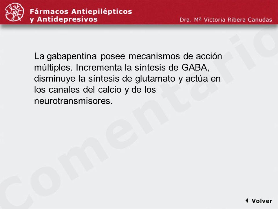 Comentariodiapo28 La gabapentina posee mecanismos de acción múltiples. Incrementa la síntesis de GABA, disminuye la síntesis de glutamato y actúa en l