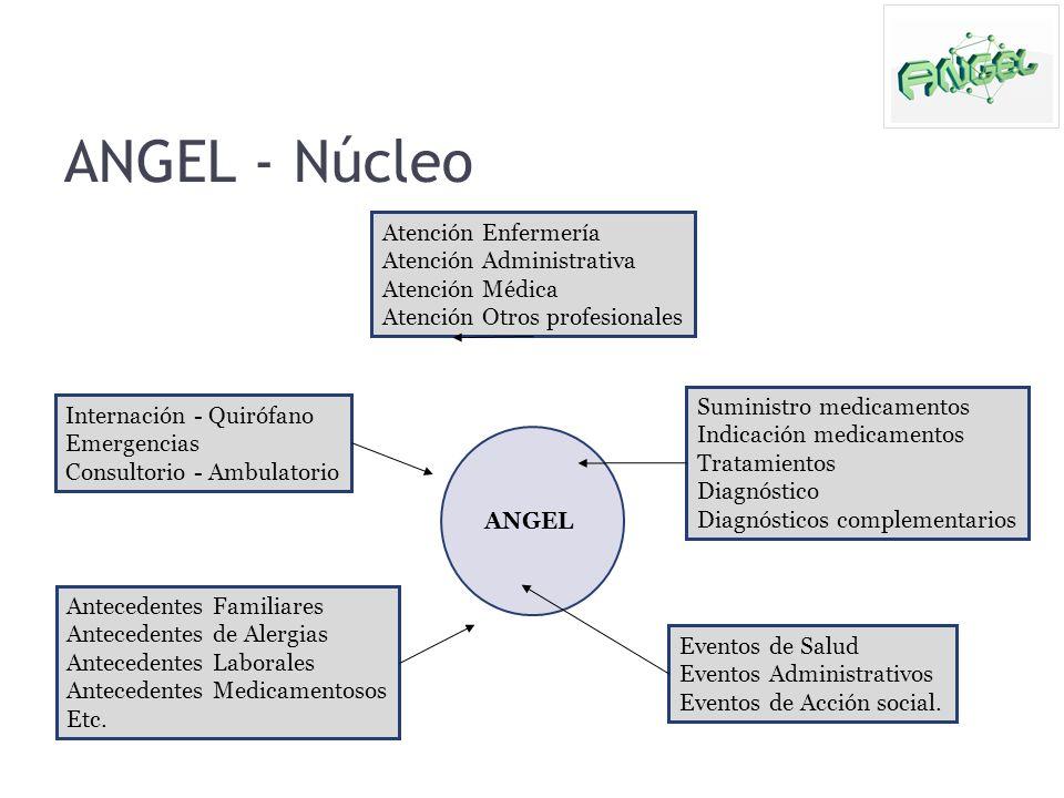 ANGEL - Núcleo ANGEL Internación - Quirófano Emergencias Consultorio - Ambulatorio Suministro medicamentos Indicación medicamentos Tratamientos Diagnó
