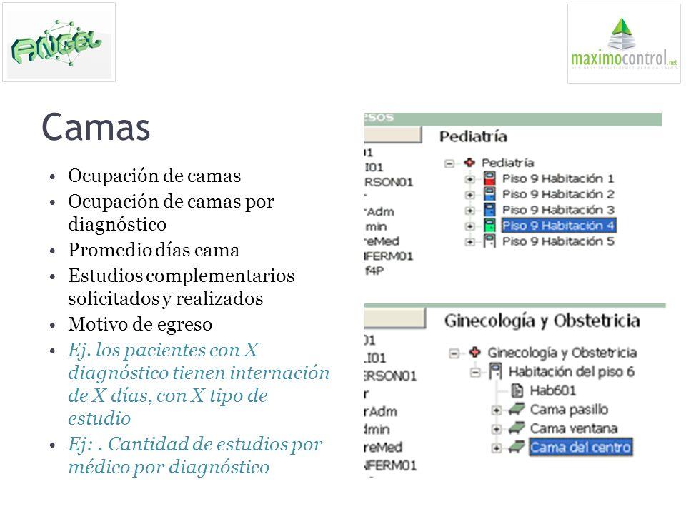 Camas Ocupación de camas Ocupación de camas por diagnóstico Promedio días cama Estudios complementarios solicitados y realizados Motivo de egreso Ej.