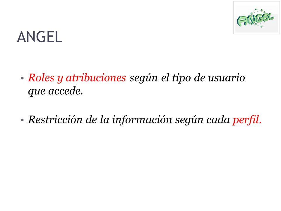 Roles y atribuciones según el tipo de usuario que accede. Restricción de la información según cada perfil. ANGEL