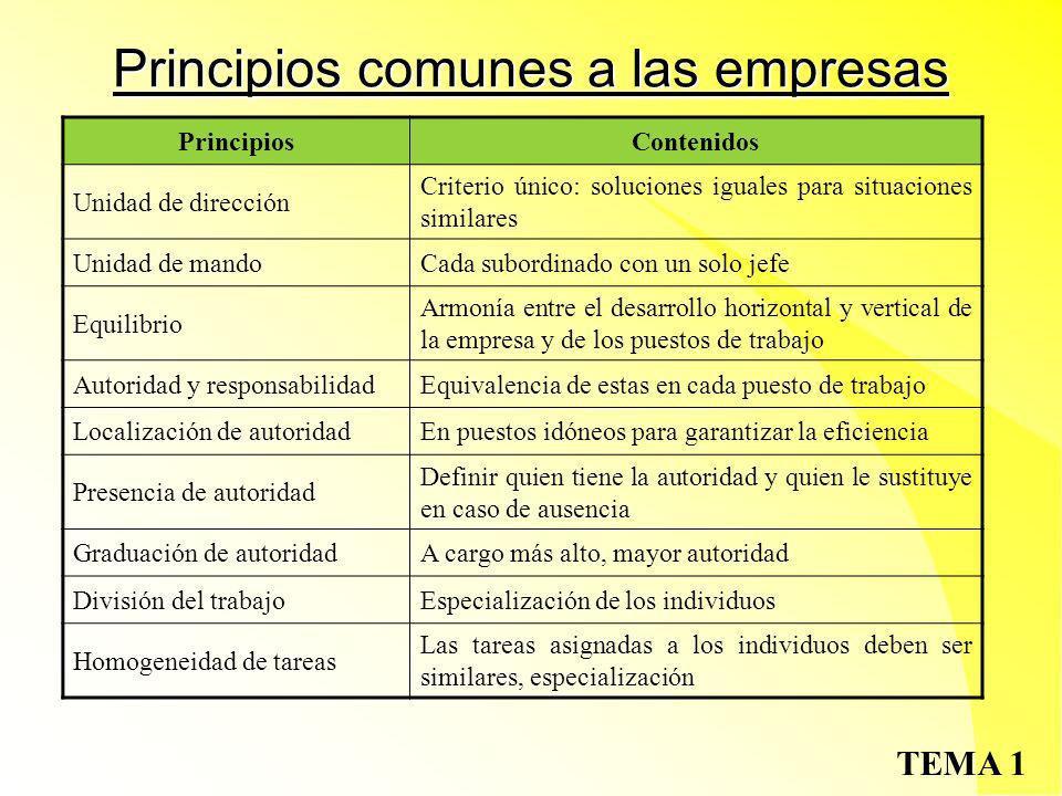 TEMA 1 Concepto de empresa Una forma especial de organización es la EMPRESA: sistema abierto e internamente organizado para la explotación de recursos (capital y trabajo) y obtención de resultados (beneficios)