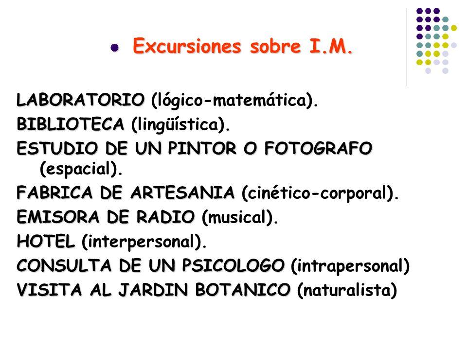Excursiones sobre I.M. Excursiones sobre I.M. LABORATORIO LABORATORIO (lógico-matemática). BIBLIOTECA BIBLIOTECA (lingüística). ESTUDIO DE UN PINTOR O