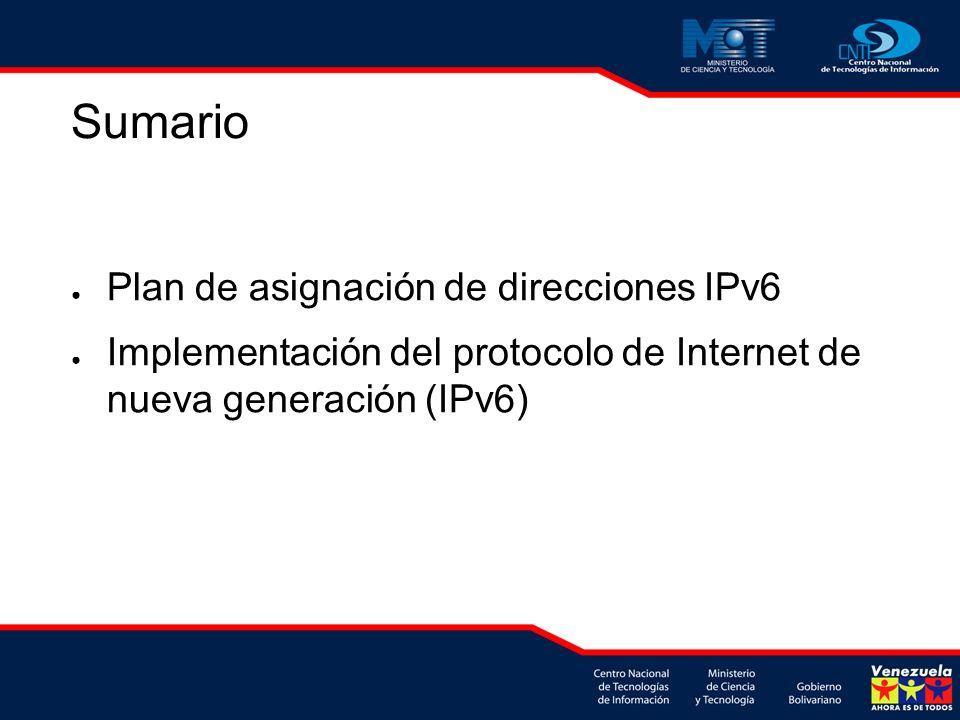 Sumario Plan de asignación de direcciones IPv6 Implementación del protocolo de Internet de nueva generación (IPv6)