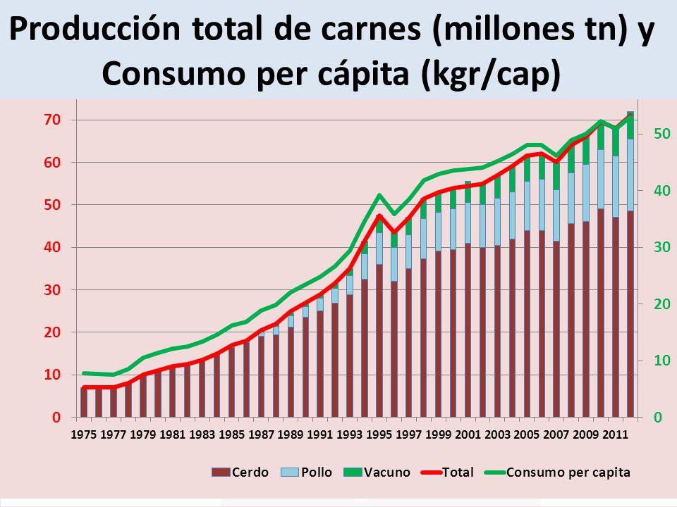 Producción total de carnes (millones tn) y Consumo per cápita (kgr/cap)