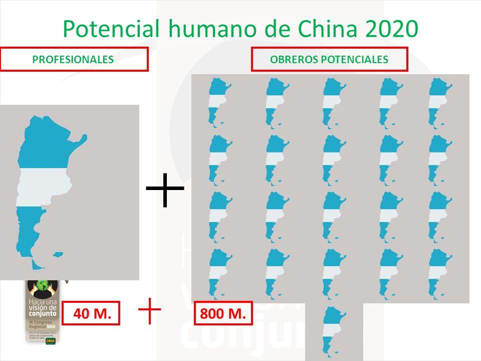 Potencial humano de China 2020 PROFESIONALESOBREROS POTENCIALES 40 M.800 M.
