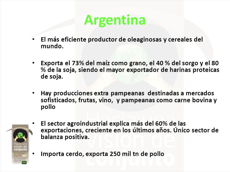 Argentina El más eficiente productor de oleaginosas y cereales del mundo. Exporta el 73% del maíz como grano, el 40 % del sorgo y el 80 % de la soja,