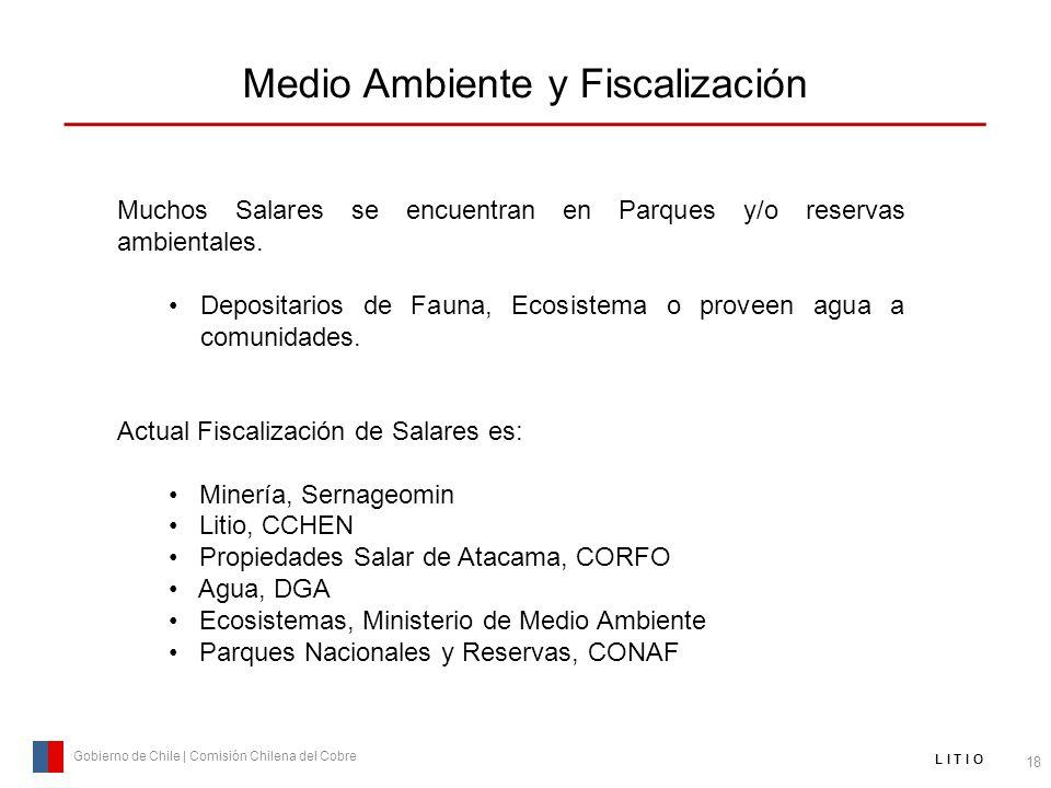 Medio Ambiente y Fiscalización 18 Gobierno de Chile | Comisión Chilena del Cobre L I T I O Muchos Salares se encuentran en Parques y/o reservas ambien