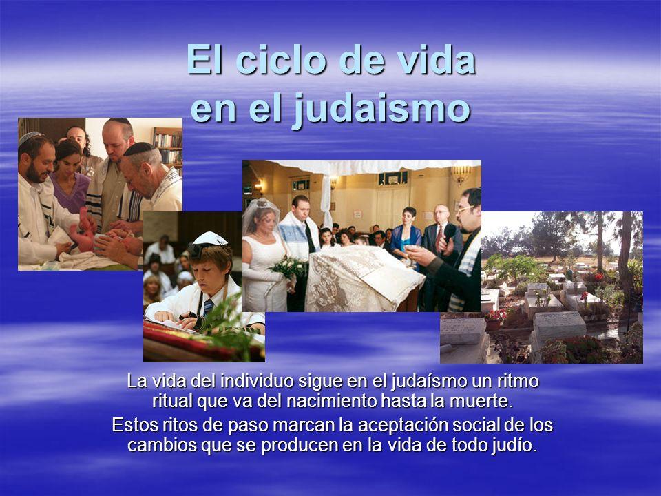 El ciclo de vida en el judaismo La vida del individuo sigue en el judaísmo un ritmo ritual que va del nacimiento hasta la muerte. Estos ritos de paso