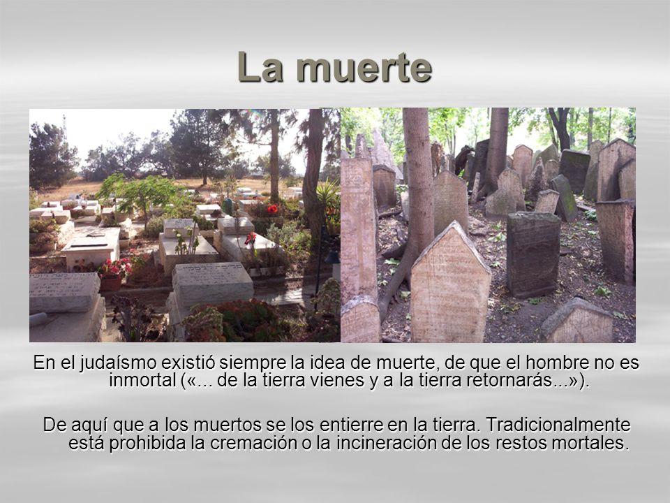 La muerte En el judaísmo existió siempre la idea de muerte, de que el hombre no es inmortal («... de la tierra vienes y a la tierra retornarás...»). D