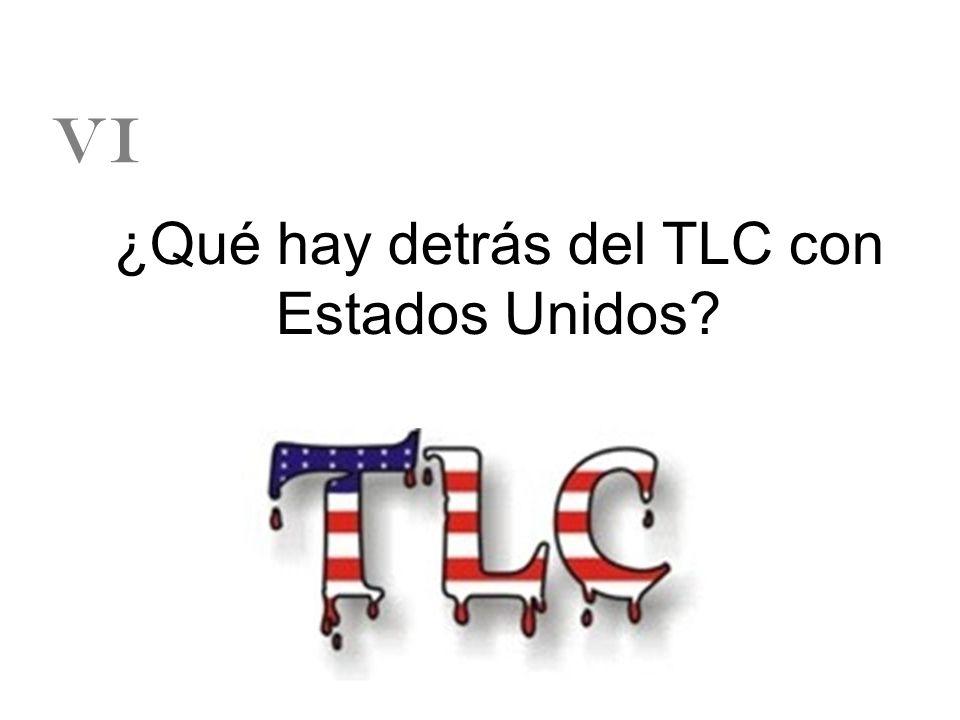 ¿Qué hay detrás del TLC con Estados Unidos? VI