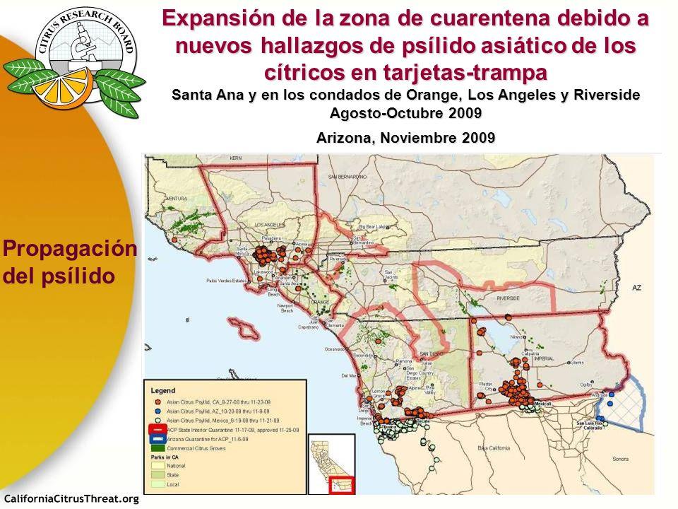 Expansión de la zona de cuarentena debido a nuevos hallazgos de psílido asiático de los cítricos en tarjetas-trampa Santa Ana y en los condados de Ora