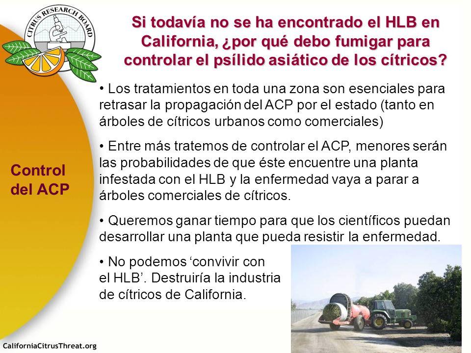 Los tratamientos en toda una zona son esenciales para retrasar la propagación del ACP por el estado (tanto en árboles de cítricos urbanos como comerci