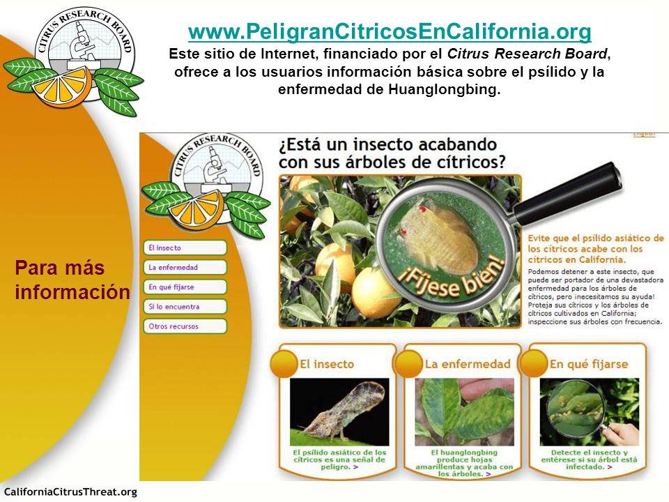 www.PeligranCitricosEnCalifornia.org Este sitio de Internet, financiado por el Citrus Research Board, ofrece a los usuarios información básica sobre e