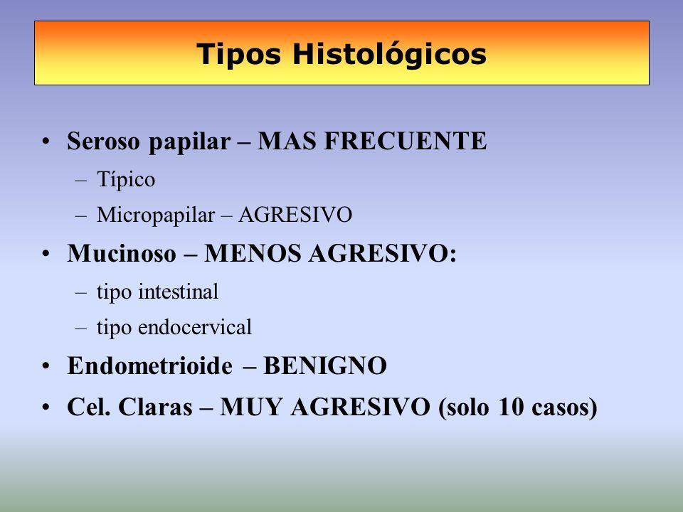Tipos Histológicos Seroso papilar – MAS FRECUENTE –Típico –Micropapilar – AGRESIVO Mucinoso – MENOS AGRESIVO: –tipo intestinal –tipo endocervical Endo