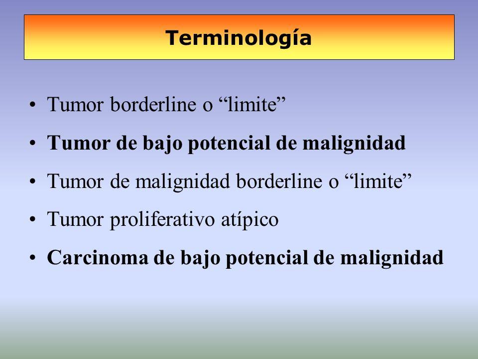 Tumor borderline o limite Tumor de bajo potencial de malignidad Tumor de malignidad borderline o limite Tumor proliferativo atípico Carcinoma de bajo