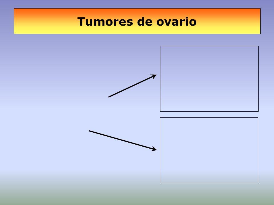 Supervivencia (5 años) según estadio TBPM vs.