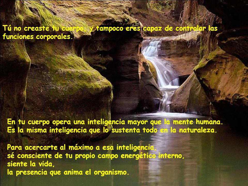 Todas las cosas naturales, además de estar unificadas consigo mismas, están unificadas con la totalidad.