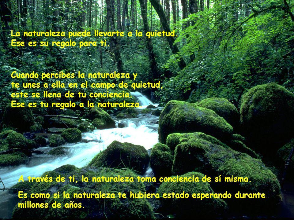 Pensar es una etapa en la evolución de la vida. La naturaleza existe en una quietud inocente que es anterior a la aparición del pensamiento. Cuando lo