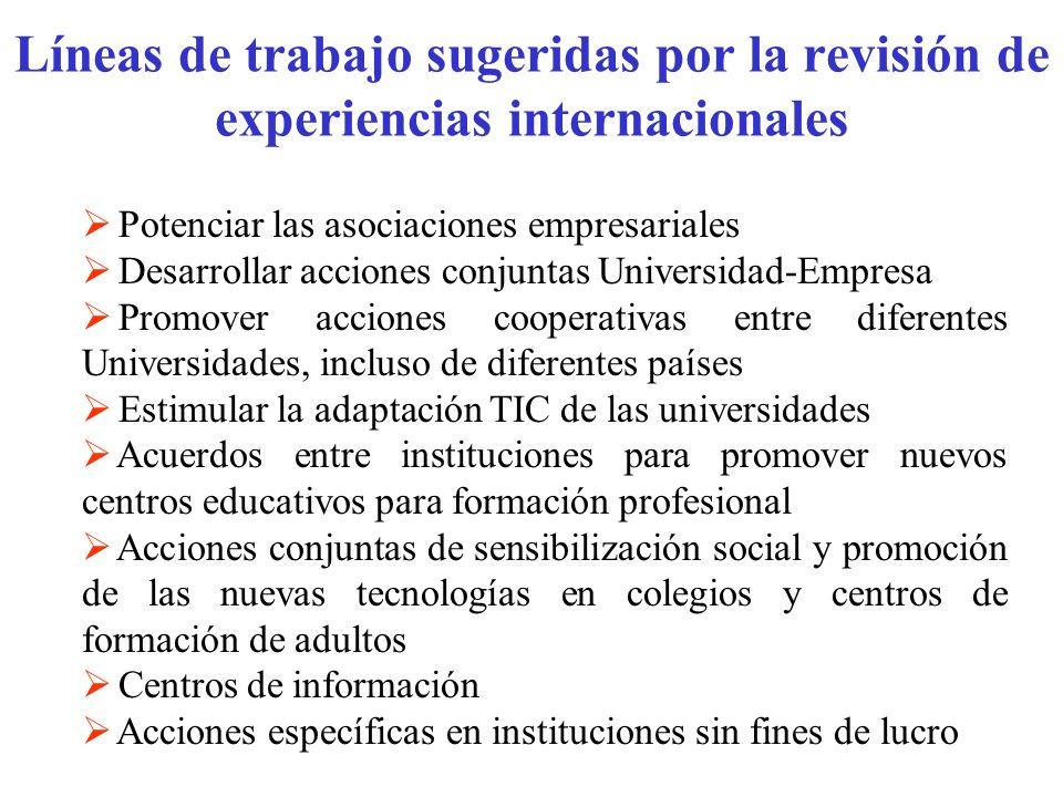 Líneas de trabajo sugeridas por la revisión de experiencias internacionales Potenciar las asociaciones empresariales Desarrollar acciones conjuntas Un