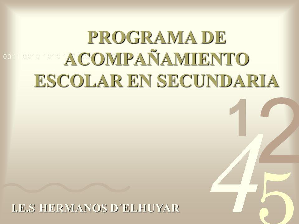 PROGRAMA DE ACOMPAÑAMIENTO ESCOLAR EN SECUNDARIA I.E.S HERMANOS D´ELHUYAR
