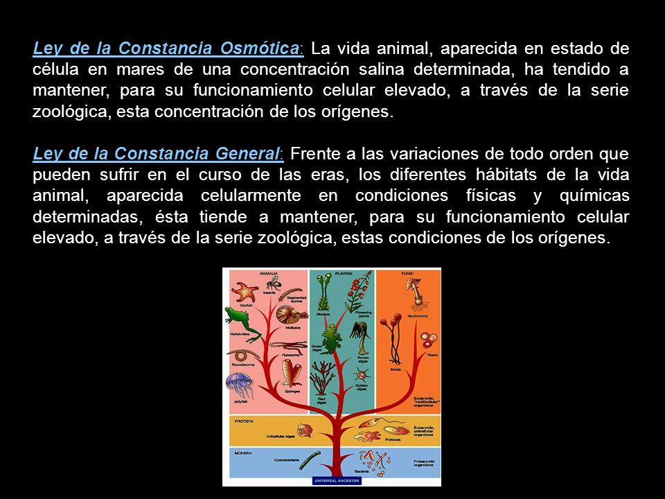 Quinton formuló una serie de Leyes denominadas de la Constancia: Ley de la Constancia Térmica: Frente al enfriamiento del globo, la vida animal, apare