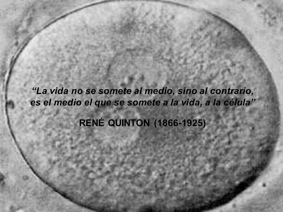 La vida no se somete al medio, sino al contrario, es el medio el que se somete a la vida, a la célula RENÉ QUINTON (1866-1925)