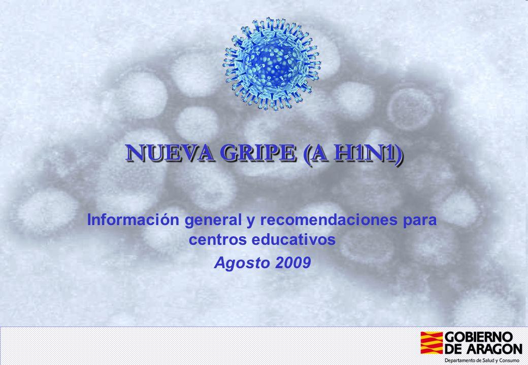 NUEVA GRIPE (A H1N1) Información general y recomendaciones para centros educativos Agosto 2009