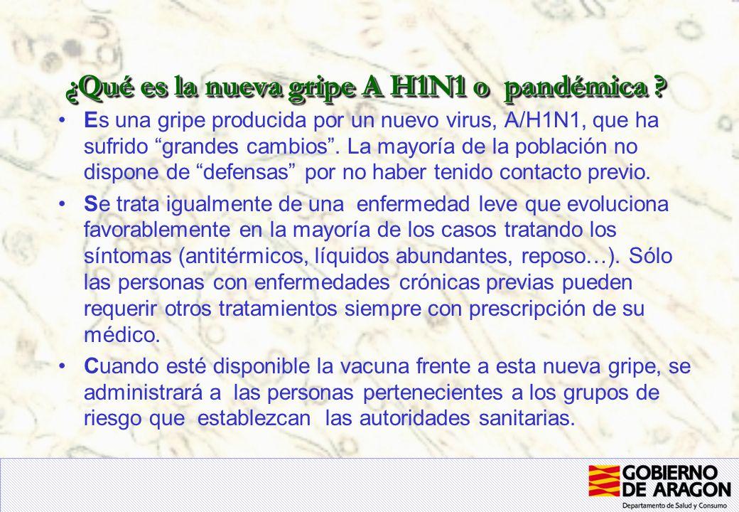 ¿Qué es la nueva gripe A H1N1 o pandémica .
