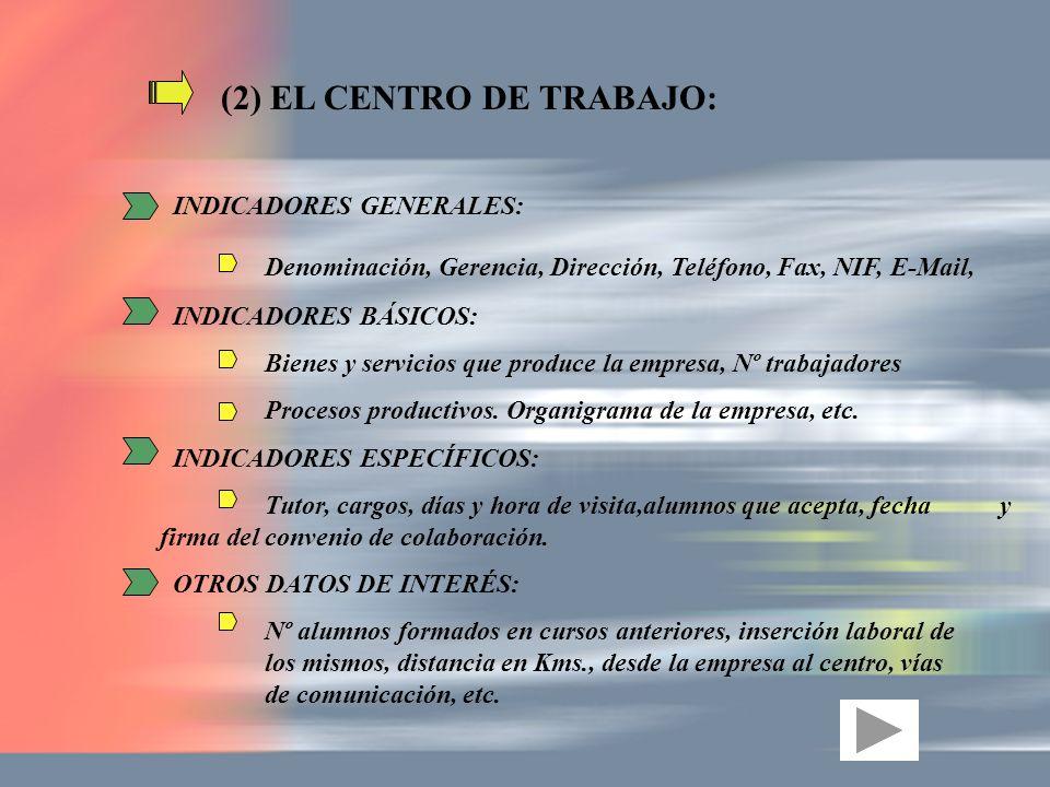 (2) EL CENTRO DE TRABAJO: INDICADORES GENERALES: Denominación, Gerencia, Dirección, Teléfono, Fax, NIF, E-Mail, INDICADORES BÁSICOS: Bienes y servicio