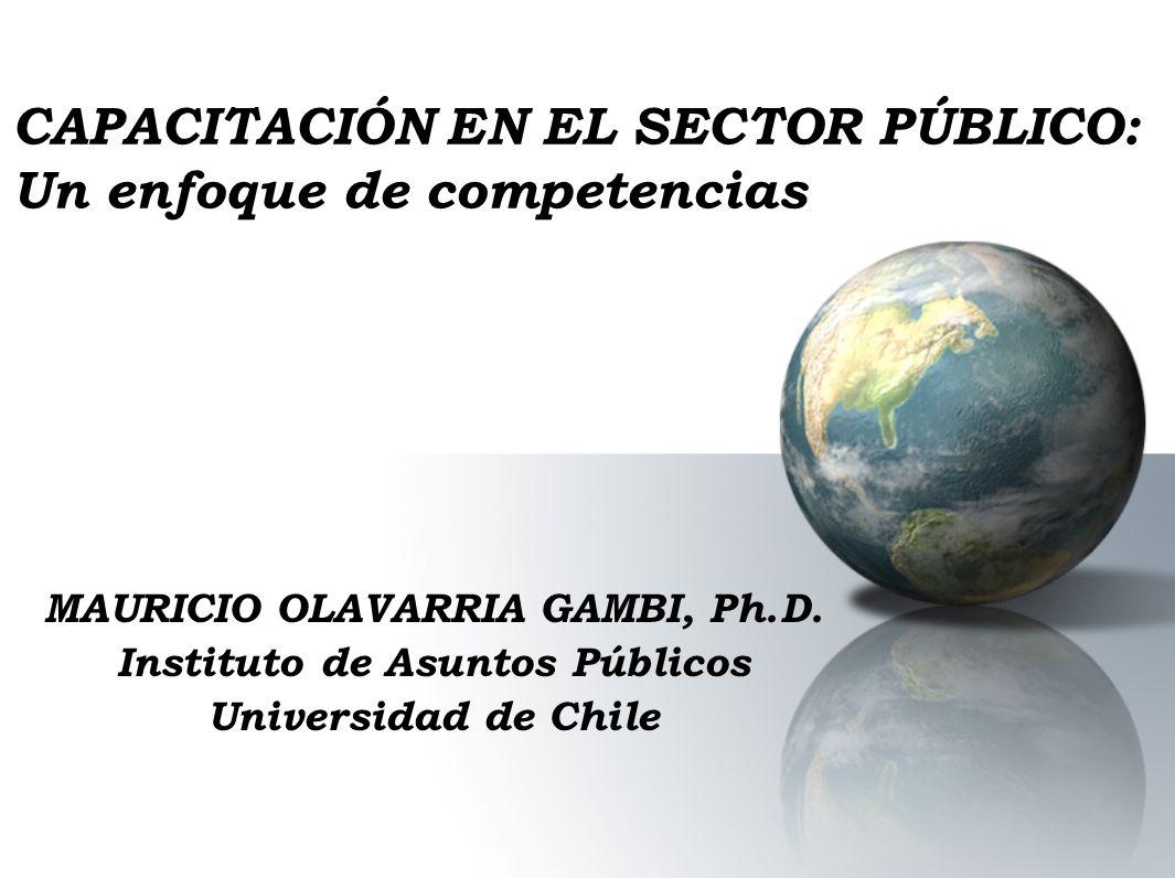 CAPACITACIÓN EN EL SECTOR PÚBLICO: Un enfoque de competencias MAURICIO OLAVARRIA GAMBI, Ph.D. Instituto de Asuntos Públicos Universidad de Chile
