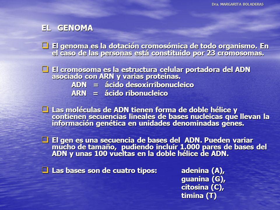 Dra. MARGARITA BOLADERAS EL GENOMA El genoma es la dotación cromosómica de todo organismo. En el caso de las personas está constituido por 23 cromosom