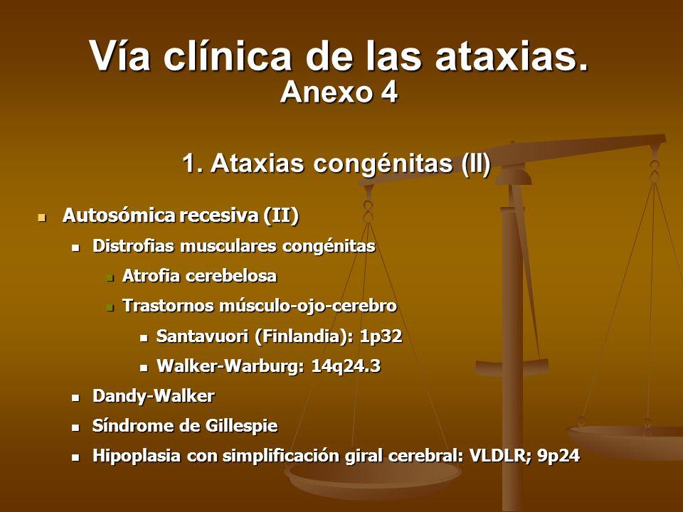 1. Ataxias congénitas (II) Autosómica recesiva (II) Autosómica recesiva (II) Distrofias musculares congénitas Distrofias musculares congénitas Atrofia