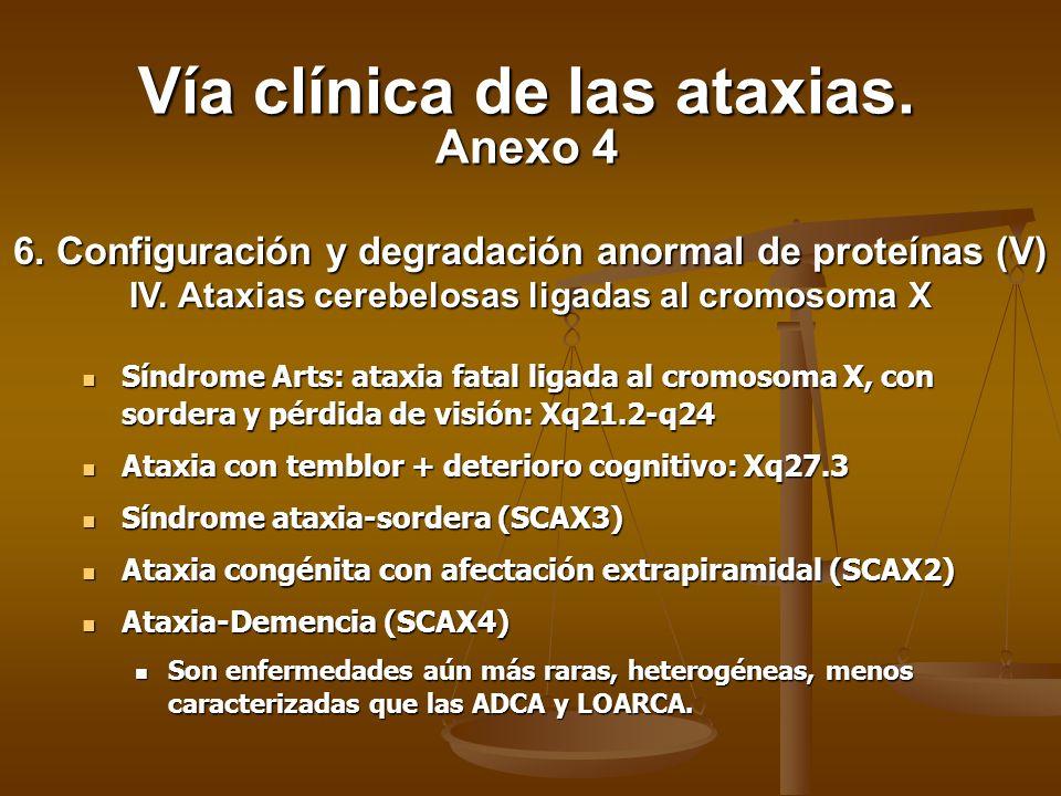 Síndrome Arts: ataxia fatal ligada al cromosoma X, con sordera y pérdida de visión: Xq21.2-q24 Síndrome Arts: ataxia fatal ligada al cromosoma X, con