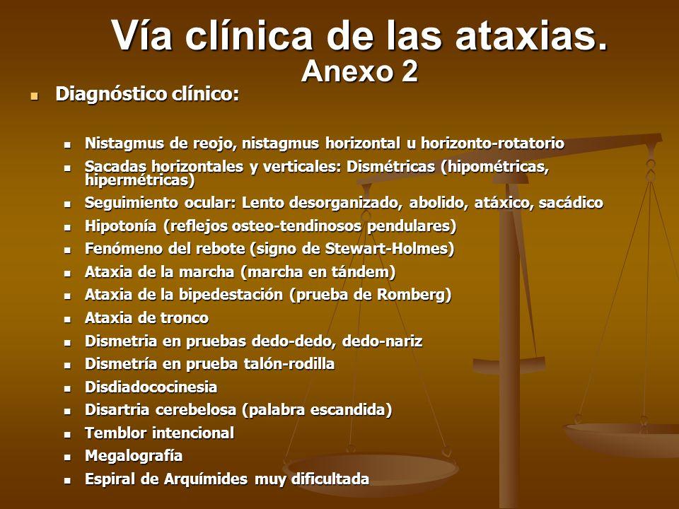 Exploraciones complementarias (X) Exploraciones complementarias (X) Vía clínica de las ataxias.