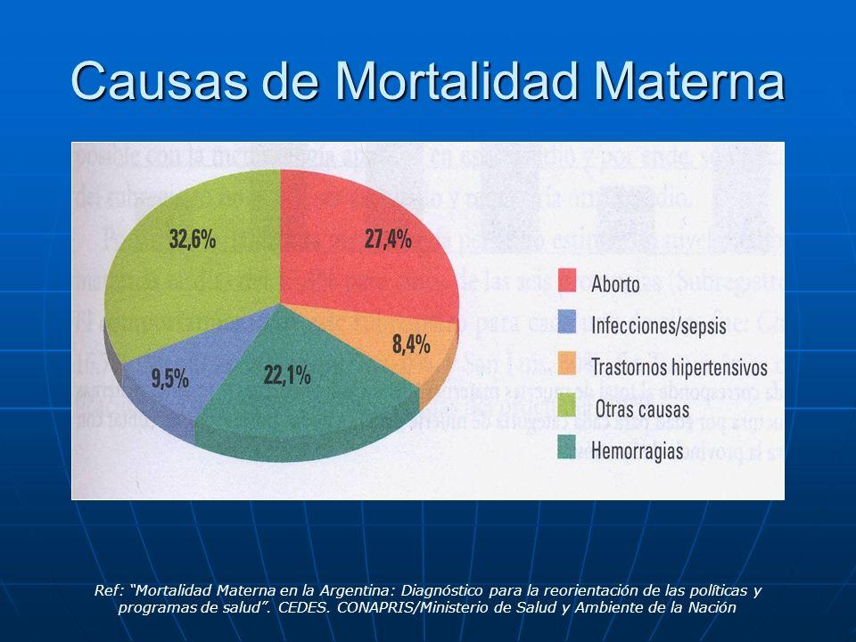 Causas de Mortalidad Materna Ref: Mortalidad Materna en la Argentina: Diagnóstico para la reorientación de las políticas y programas de salud. CEDES.