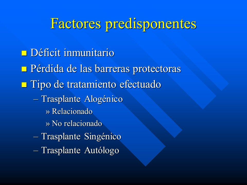 Factores predisponentes Déficit inmunitario Déficit inmunitario Pérdida de las barreras protectoras Pérdida de las barreras protectoras Tipo de tratamiento efectuado Tipo de tratamiento efectuado –Trasplante Alogénico »Relacionado »No relacionado –Trasplante Singénico –Trasplante Autólogo