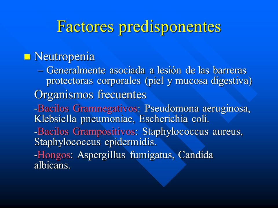 Factores predisponentes Neutropenia Neutropenia –Generalmente asociada a lesión de las barreras protectoras corporales (piel y mucosa digestiva) Organismos frecuentes -Bacilos Gramnegativos: Pseudomona aeruginosa, Klebsiella pneumoniae, Escherichia coli.