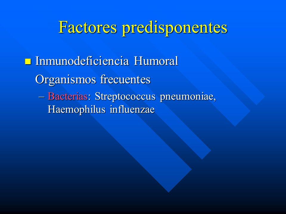 Factores predisponentes Inmunodeficiencia Humoral Inmunodeficiencia Humoral Organismos frecuentes –Bacterias: Streptococcus pneumoniae, Haemophilus influenzae