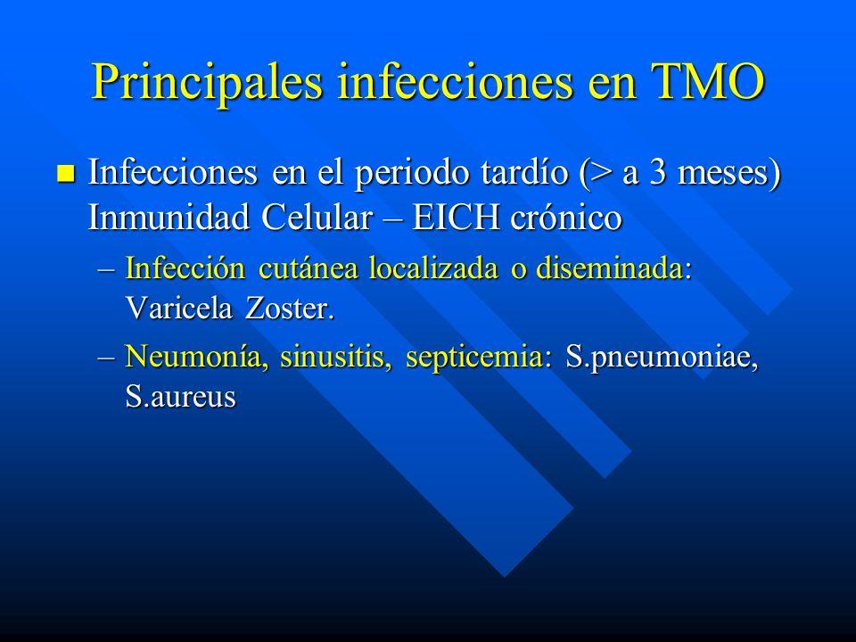 Principales infecciones en TMO Infecciones en el periodo tardío (> a 3 meses) Inmunidad Celular – EICH crónico Infecciones en el periodo tardío (> a 3 meses) Inmunidad Celular – EICH crónico –Infección cutánea localizada o diseminada: Varicela Zoster.