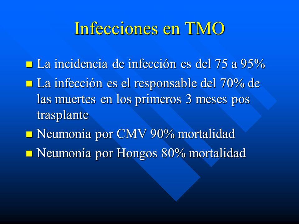 Infecciones en TMO La incidencia de infección es del 75 a 95% La incidencia de infección es del 75 a 95% La infección es el responsable del 70% de las muertes en los primeros 3 meses pos trasplante La infección es el responsable del 70% de las muertes en los primeros 3 meses pos trasplante Neumonía por CMV 90% mortalidad Neumonía por CMV 90% mortalidad Neumonía por Hongos 80% mortalidad Neumonía por Hongos 80% mortalidad