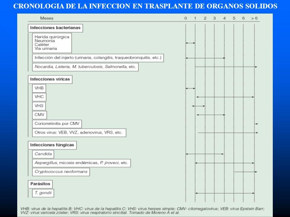 CRONOLOGIA DE LA INFECCION EN TRASPLANTE DE ORGANOS SOLIDOS