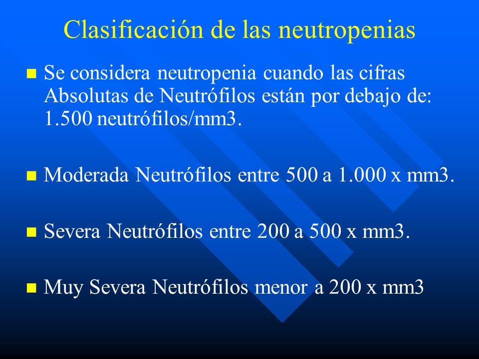 Clasificación de las neutropenias Se considera neutropenia cuando las cifras Absolutas de Neutrófilos están por debajo de: 1.500 neutrófilos/mm3.