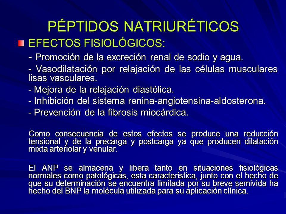PÉPTIDOS NATRIURÉTICOS EFECTOS FISIOLÓGICOS: - Promoción de la excreción renal de sodio y agua. - Vasodilatación por relajación de las células muscula