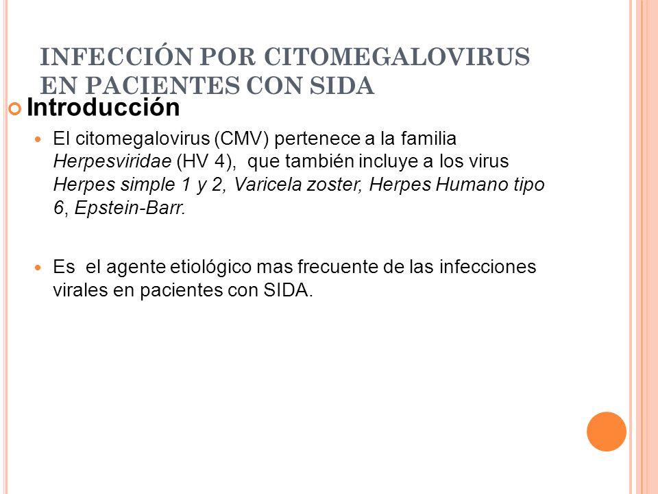 INFECCIÓN POR CITOMEGALOVIRUS EN PACIENTES CON SIDA Introducción El citomegalovirus (CMV) pertenece a la familia Herpesviridae (HV 4), que también inc