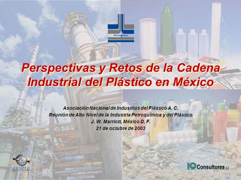 Perspectivas y Retos de la Cadena Industrial del Plástico en México Asociación Nacional de Industrias del Plástico A. C. Reunión de Alto Nivel de la I